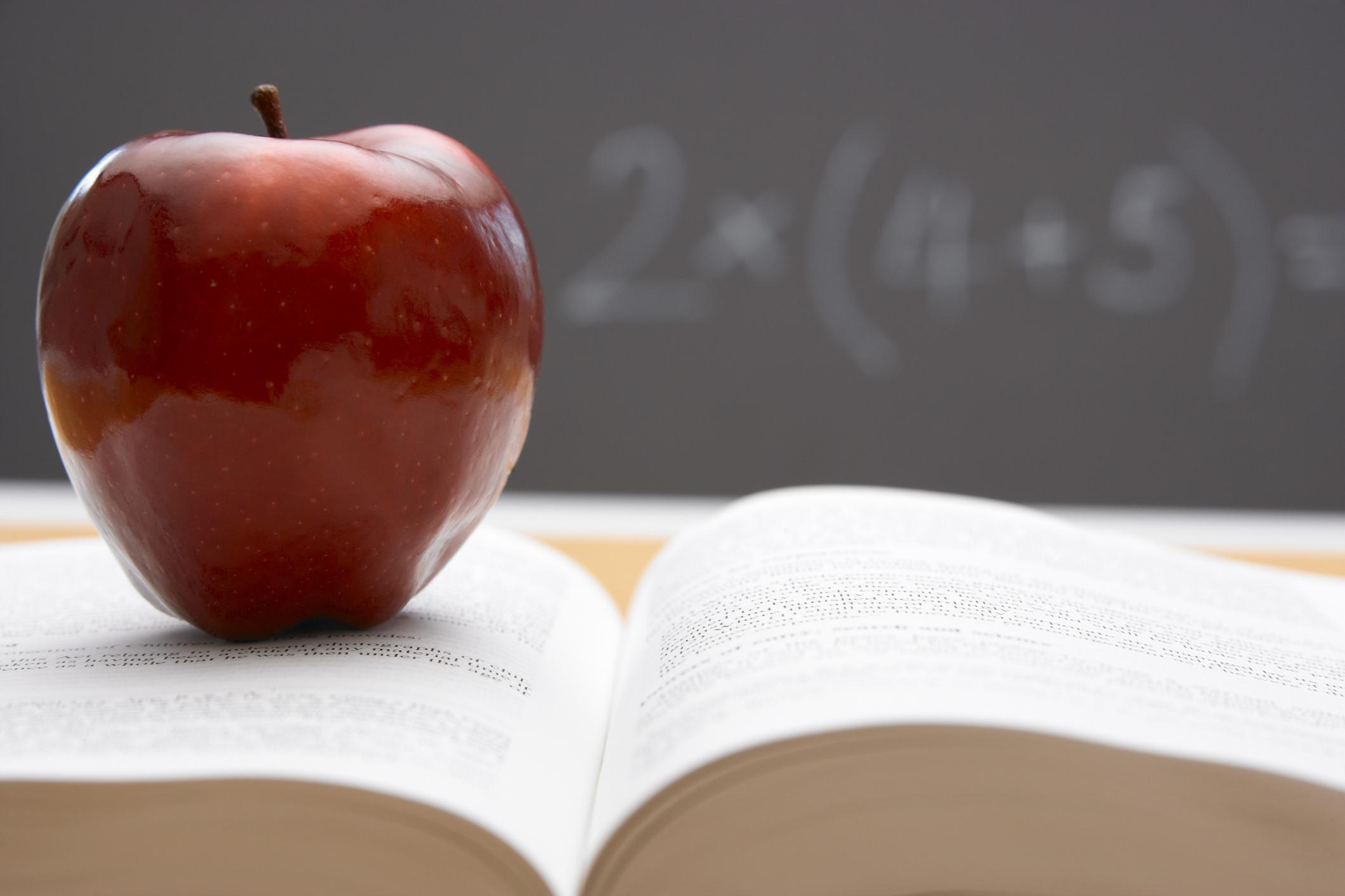 educación, maestro, alumno, escuela, aula, salón de clases