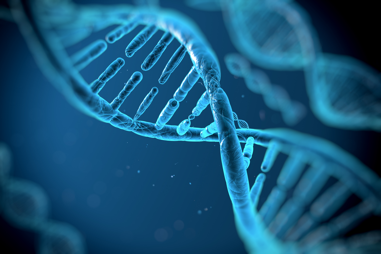 ad, estructura, célula, genética, medicina genómica