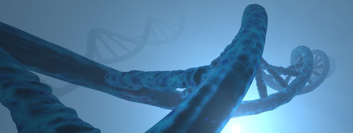 enfermedad de Gaucher, terapia génica