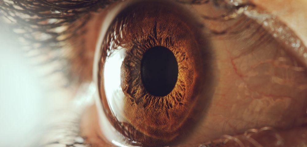 enfermedad de Fabry, vasos sanguíneos oculares