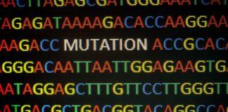 Fabry mutación