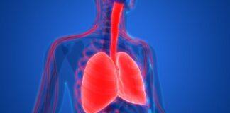 Pompe, sistema respiración