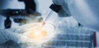 terapia génica de células madre, enfermedad de Pompe