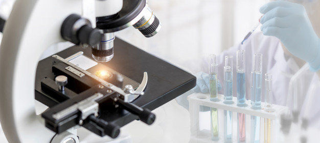 Protalix BioTherapeutics, tratamiento BRIGHT, Fabry.