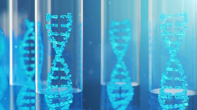 terapia génica ST-920, enfermedad de Fabry