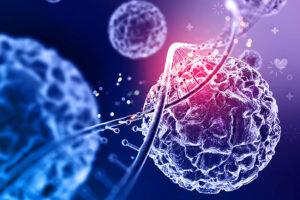 terapia de reducción de sustrato para Gaucher neuronopático