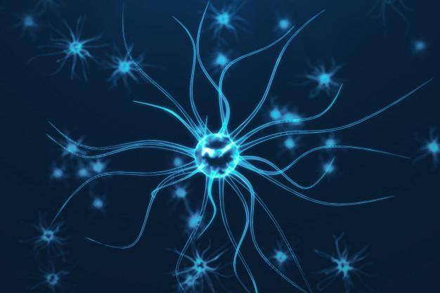 nuevos modelos neuronales, astrocíticos, síndrome Sanfilippo