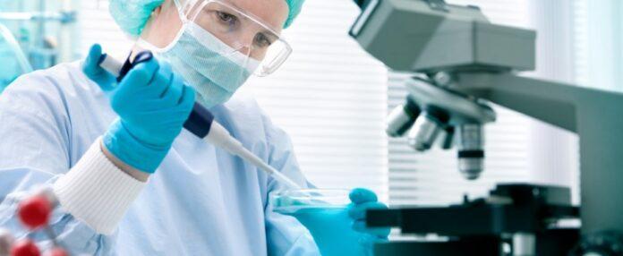 El algoritmo Blood Test Plus podría ayudar a detectar más fácilmente Gaucher tipo 1