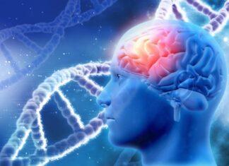 Fisiopatología de la enfermedad de Tay-Sachs