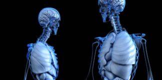 Convocan a la detección oportuna en México de la enfermedad de Gaucher